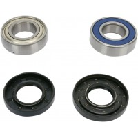 KIT ROULEMENT CHAINE CHAINCASE BEARING-SEAL KT pièce moto