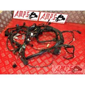 Faisceau électrique principale ABS  ER6 06 07 08